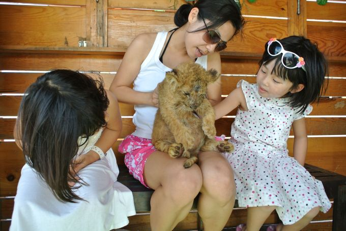 A little play date with a baby lion
