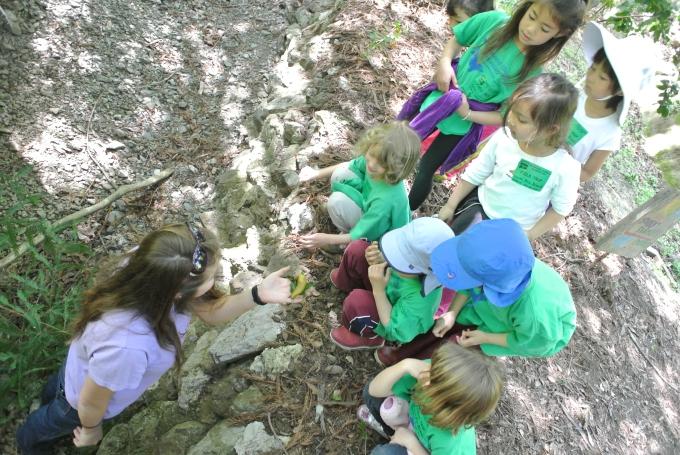 Checking out the banana slugs