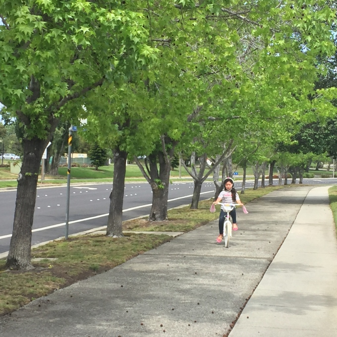 We love our neighborhood, and try to take daily walks or bike rides to soak in all of Mother Nature