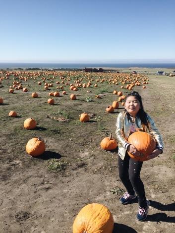 Found my pumpkin!